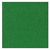 Canson Superior Crepe Paper 50cm x 250cm Fern Green
