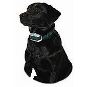 Company of Animals Aboistop Kit Dog Training
