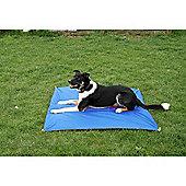 Clix Agility Dog Pause Mat