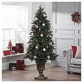 Dobbies Wraysbury Tree In Urn, 6.4ft