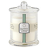 Tesco Apothecary Eucalyptus and Peppermint Candle in a Large Filled Jar