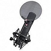 sE Electronics sE2200a II Multi Pattern Condenser Mic