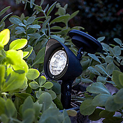 White LED Solar Powered Garden Spot Light