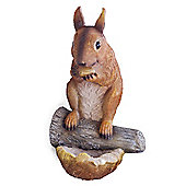 Earl the Realistic Nut-Eating Garden Squirrel Ornament for Tree or Wall Mount