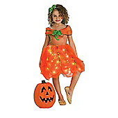 Twinkle Pumpkin Princess - Child Costume 5-7 years