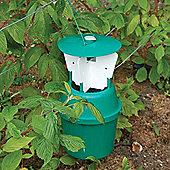 Raspberry Beetle Trap - 1 refill pack