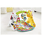 Fisher-Price Newborn To Toddler Play Gym