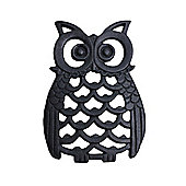 Cast Iron Owl Wall Art Ornament in Black Finish