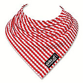 Skibz Bandana Dribble Bib - Red Gingham