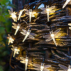 30 Warm White LED Dragonfly Solar Garden Fairy Lights