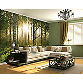 1Wall Giant Forest Sunrise Wall Mural
