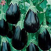 Aubergine 'Bonica' F1 Hybrid - 1 packet (10 aubergine seeds)