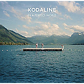 In The Perfect World (Cd/Dvd)