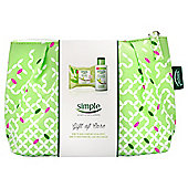 Simple Gift of Care Cosmetics Gift Bag