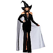 Sultry Sorceress - Adult Costume Size: 6-8