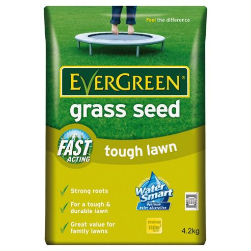 Evergreen Multipurpose Grass Seed 140sqm bag