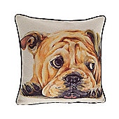 McAlister Printed Bull Dog Cushion - Wool Look