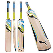 Puma Calibre 5000Y Cricket Bat Grade A English Willow Size 5