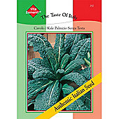 Kale 'Cavolo Palmizio Senza Testa' - Vita Sementi® Italian Seeds - 1 packet (2500 kale seeds)