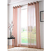 Plain Ring Top Voile - Brown