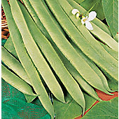 runner bean (runner bean 'White Lady')