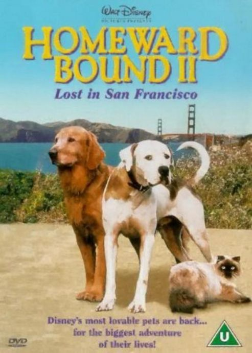 Homeward Bound 2 - Lost In San Francisco (DVD)