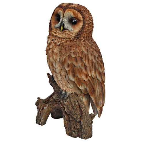 Real Life Tawny Owl Ornament