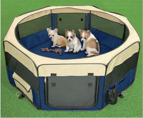 3Petzzz Small Pet Play Pen in Royal Blue