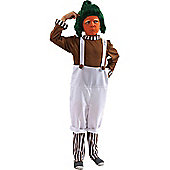 Child Oompa Loompa Costume (And Wig) Medium