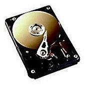 Fujitsu Fujitsu S26361-F4482-L130 300 GB SAS Hard Drive