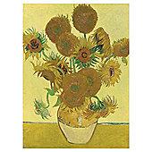Van Gogh 2x500