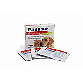 Panacur Granules 22% Cat/Dog 3 x 4.5g Sachets