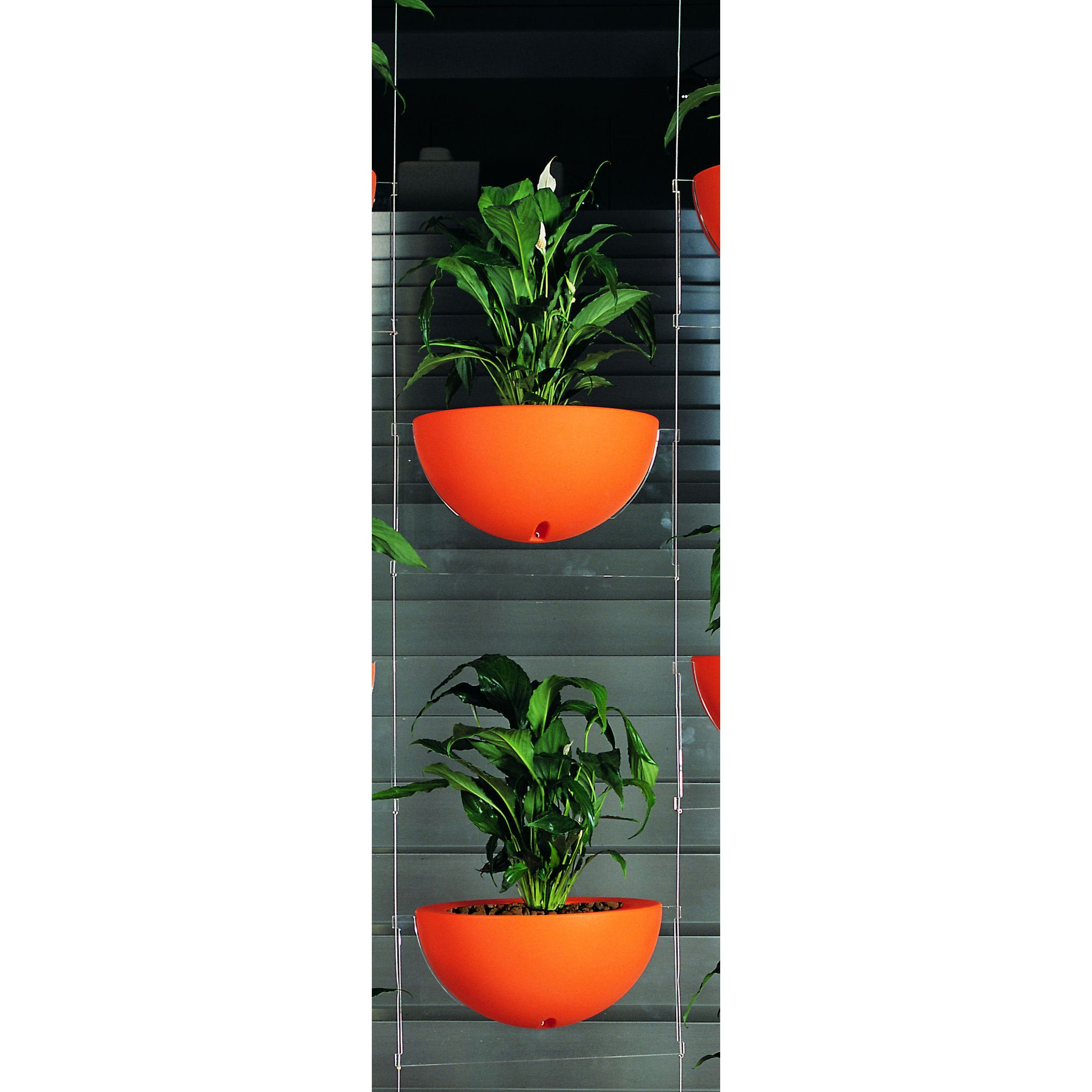 Emporium Positive Design Eebavoglio Double Flower Tray - Orange at Tesco Direct
