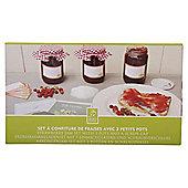 Fallen Fruits Strawberry Jam Set (3 Pots & Covers)