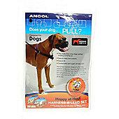 Ancol Dog Happy at Heel Harness Medium 4 - 5 (34cm-50cm)