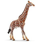 Schleich Male Giraffe