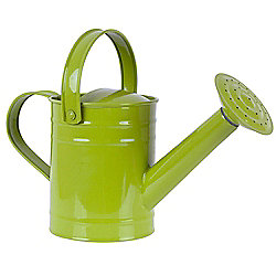 Twigz Childrens Gardening Tools 0803 Watering Can (Green)