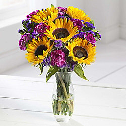 British Sunflower & Carnation Abundance