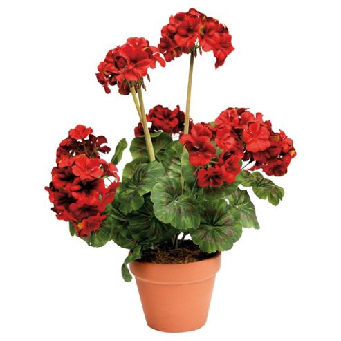 buy 44cm artificial geranium plant in terracotta pot from. Black Bedroom Furniture Sets. Home Design Ideas