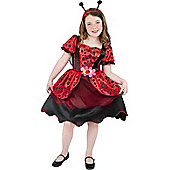 Little Lady Bug - Child Costume 4-6 years