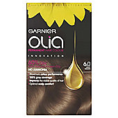 Garnier Olia Permanent Hair Colour Olia 6.0 Light Brown