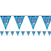 Dazzling Effects 100th Flag Banner - 12ft (each)