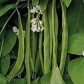 Runner Bean 'Moonlight' - 1 packet (45 runner bean seeds)