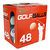 Lake Balls -Mixed Brands Golf Balls Box of 48 Balls