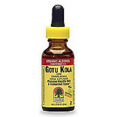 Natures Answer Gotu Kola Herb - Standardised 30ml Liquid