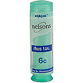 Nelsons Rhus Tox 6C 84 Pillules