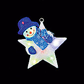 Battery Operated 31cm Illuminated Star