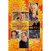 Best Exotic Marigold Hotel (DVD)