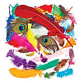 Feathers Value Classpack (Pack of 1000 )