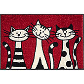 Wash & Dry by Kleen-Tex Three Cats Flat Bordered Rug - 50cmx75cm